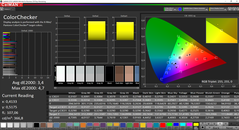 CalMAN ColorChecker (sRGB)