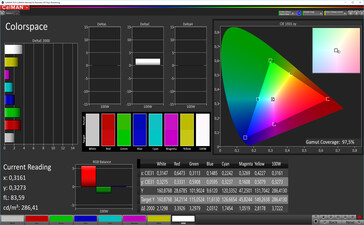 CalMAN: Colour Space – simple mode, sRGB target colour space