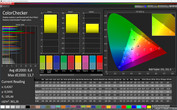 CalMAN ColorChecker sRGB (Интенсивный)